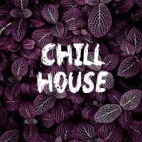 Chill House - Various Artists