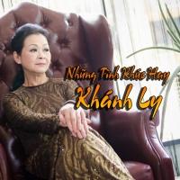 Những Tình Khúc Hay Khánh Ly - Various Artists