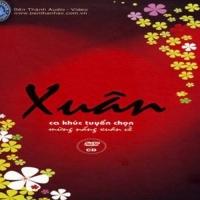 100 Ca Khúc Nhạc Xuân Tuyển Chọn CD3 - Đan Trường