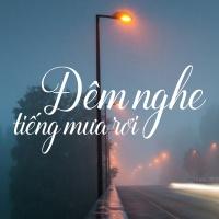 Đêm Nghe Tiếng Mưa Rơi - Various Artists