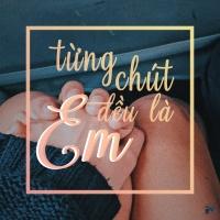 Từng Chút Đều Là Em - Various Artists