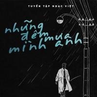 Những Đêm Mưa Mình Anh - Various Artists