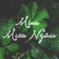 Mùa Mưa Ngâu (Tuyển Tập Trữ Tình) - Various Artists