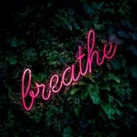 Trong Từng Nhịp Thở