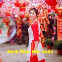 Hạnh Phúc Đầu Xuân - Various Artists