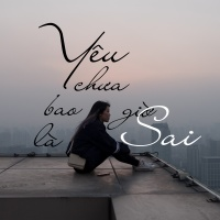 Yêu Chưa Bao Giờ Là Sai - Various Artists
