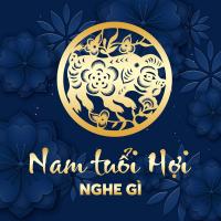 Nam Tuổi Hợi Nghe Gì? - Various Artists