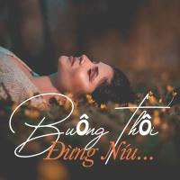 Buông Thôi,Đừng Níu Nữa - Various Artists