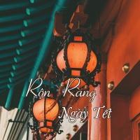 Rộn Ràng Ngày Xuân - Various Artists