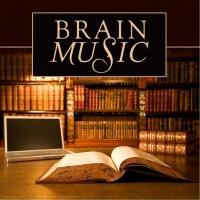 Những Bản Nhạc Không Lời Giúp Bạn Tập Trung Khi Học Tập Và Làm Việc - Various Artists