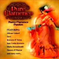 Pure Flamenco: Nuevo Flamenco Passion - Various Artists