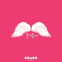 Molae Molae (Single) - I.B.I