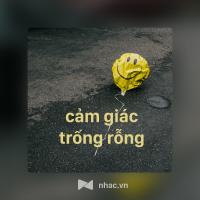 Cảm Giác Trống Rỗng - Various Artists