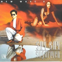 New Wave 6 - Shy Shy Sugarmen - Various Artists