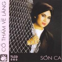 Cô Thắm Về Làng - Various Artists