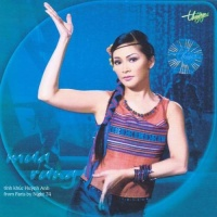 Tình Khúc Huỳnh Anh - Mưa Rừng - Various Artists