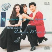 Liên Khúc Chiều Mưa 3 - Various Artists