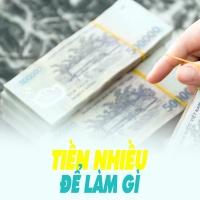 Tiền Nhiều Để Làm Gì? - Various Artists