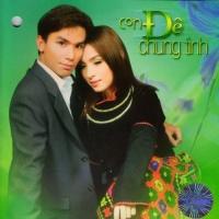 Con Đê Chung Tình - Various Artists