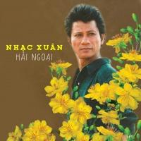 Những Bài Hát Xuân Hải Ngoại Hay Nhất - Various Artists