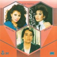 Bước Tình Hồng - Various Artists
