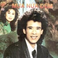 Mưa Nửa Đêm - Various Artists
