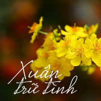 Xuân Trữ Tình - Various Artists