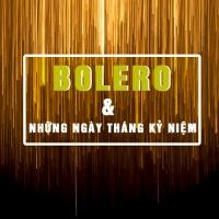 Nhạc Bolero Cho Những Ngày Tháng Kỷ Niệm - Various Artists