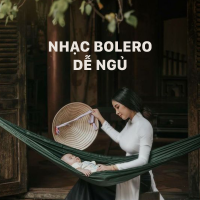 Nhạc Bolero Dễ Ngủ - Various Artists