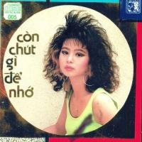 Còn Chút Gì Để Nhớ - Various Artists