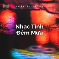 Nhạc Tình Đêm Mưa - Various Artists