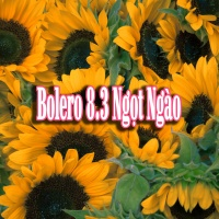 Bolero 8/3 Ngọt Ngào - Various Artists