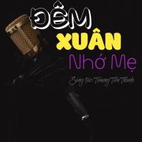 Đêm Xuân Nhớ Mẹ (Single) - Bảo Nguyên, Trương Tiến Thành