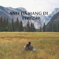 ANH ĐÃ MANG ĐI THỨ GÌ? - Various Artists