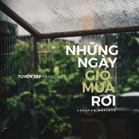 Những Ngày Gió Mưa Rơi - Various Artists