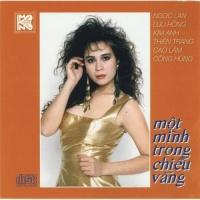 Một Mình Trong Chiều Vắng - Various Artists