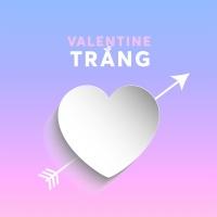 Những Bài Hát Cho Ngày Valentine Trắng - Various Artists