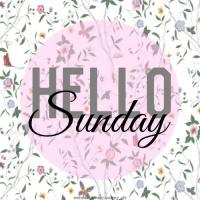 Những Bài Hát Cho Ngày Chủ Nhật - Various Artists