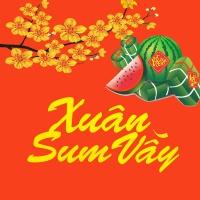Xuân Sum Vầy - Various Artists