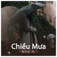 Chiều Mưa Nhớ Ai - Various Artists