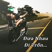 Đưa Nhau Đi Trốn - Various Artists