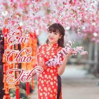 Em Chào Tết - Various Artists