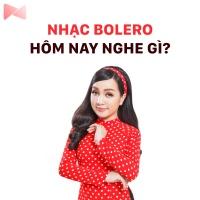 Nhạc Bolero Hôm Nay Nghe Gì? - Various Artists