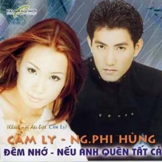 Đêm Nhớ - Nếu Anh Quên Tất Cả - Cẩm Ly, Nguyễn Phi Hùng