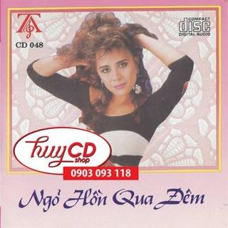 Ngõ Hồn Qua Đêm - Various Artists