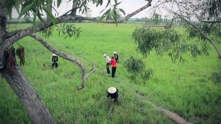 Thương Nhau Cái Tình - Tuấn Khương, Minh Nguyệt