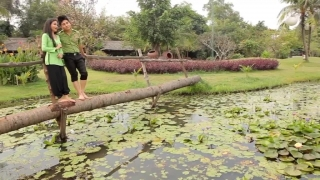 Hương Tóc Mạ Non - Dương Đình Trí