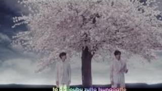 Cherry Blossom Road (Vietsub) - TVXQ