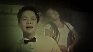 Hoa Cài Mái Tóc - Đào Phi Dương