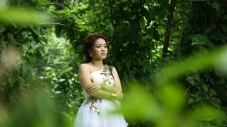 Đã Hơn Một Lần - Nguyễn Hải Yến